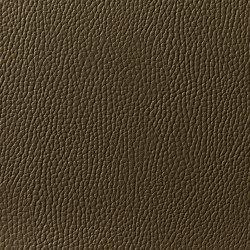 Levante 876 | Upholstery fabrics | Zimmer + Rohde