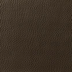 Levante 887 | Upholstery fabrics | Zimmer + Rohde