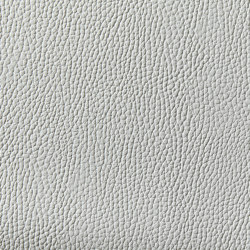 Levante 990 | Upholstery fabrics | Zimmer + Rohde