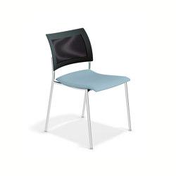 Feniks   Stühle   Casala