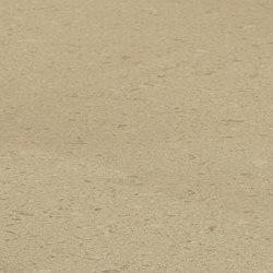 Creme Brule | Panneaux matières minérales | Caesarstone