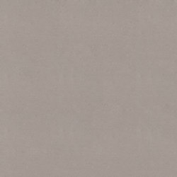 Oyster | Compuesto mineral planchas | Caesarstone