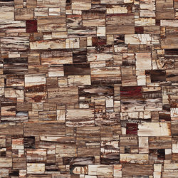 Petrified Wood – Classic | Mineral composite panels | Caesarstone