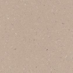 Shitake | Panneaux matières minérales | Caesarstone