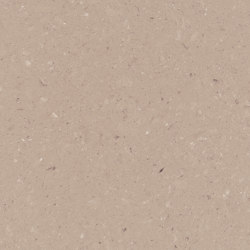 Shitake | Mineralwerkstoff Platten | Caesarstone