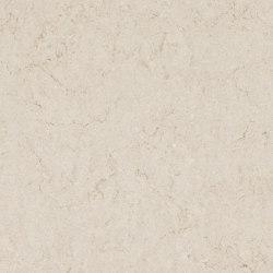 Taj Royale | Mineral composite panels | Caesarstone