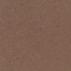 Wild Rice | Lastre minerale composito | Caesarstone