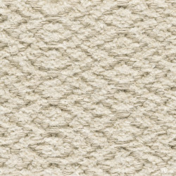 Chenille Ingrid | Champagne 800 | Rugs | Kasthall