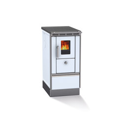 Rega 40 | Wood fired stoves | Lohberger