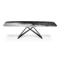 Premier CrystalArt | Dining tables | Cattelan Italia