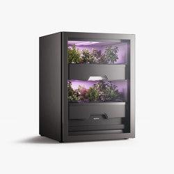 Plantcube | Kitchen cabinets | agrilution