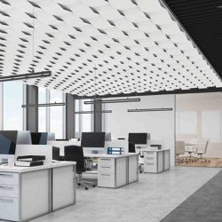 A2 | Sound absorbing ceiling systems | drapilux