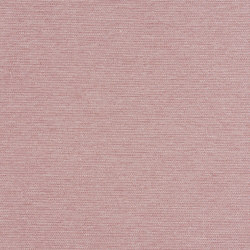 Actuate | Prelude | Upholstery fabrics | Luum Fabrics