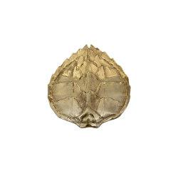 Fauna | Applique tartaruga | Lampade parete | Il Bronzetto - Brass Brothers & Co