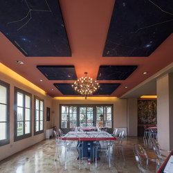 Silente Adherence | Ceiling panels | Caruso Acoustic