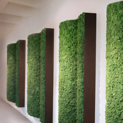 Angled Pillars | Living / Green walls | Greenmood