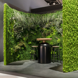 Green Walls Dense Forest | Space dividing systems | Greenmood