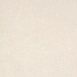 Shell 600659-0002 | Drapery fabrics | SAHCO