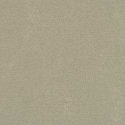 Shell 600659-0008 | Drapery fabrics | SAHCO