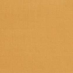 Silkwood 600007-0028 | Drapery fabrics | SAHCO