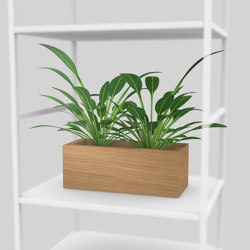 Plant module | Shelving | Artis Space Systems GmbH