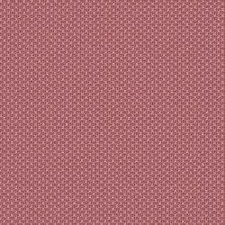 One | 006 | 4067 | 04 | Upholstery fabrics | Fidivi