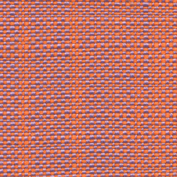 Safari   005-9305-03   Upholstery fabrics   Fidivi