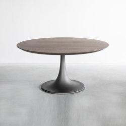 Ferrum Table | Mesas comedor | Van Rossum