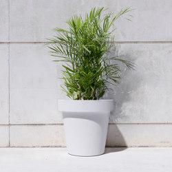 Basic Vase M | Pflanzgefäße | Sit