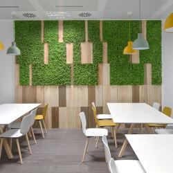 MOSSwall® Boiserie | Living / Green walls | Verde Profilo