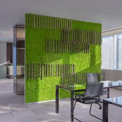MOSSwall® Strips | Living / Green walls | Verde Profilo