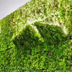 MOSSwall® Applique | Wall lights | Verde Profilo