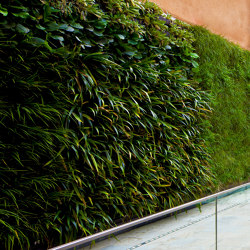 Vertical Gardens | VP-Modulo | Green facades | Verde Profilo