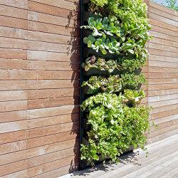 Vertical Gardens | Vertical Hortus | Green facades | Verde Profilo