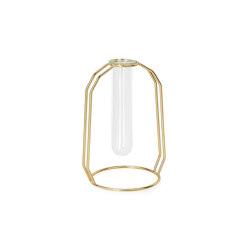 Decoration Complemens | Glass Tube/ Gold Metal Vase 12X10X17 | Vases | Andrea House