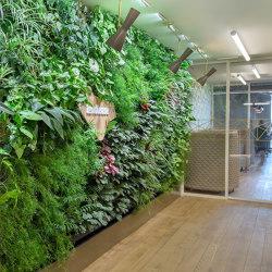 Vertical Gardens | VP-Modulo | Living / Green walls | Verde Profilo