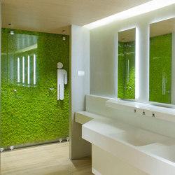 MOSSwall® | Murs végétaux | Verde Profilo