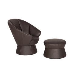DS-163 | Sessel | de Sede
