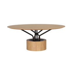 Wood-oo 001 B | Mesas comedor | al2