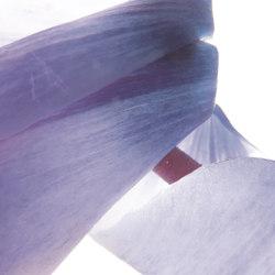 petals   cycla   Quadri / Murales   N.O.W. Edizioni