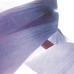 petals | cycla | Arte | N.O.W. Edizioni