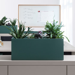 basic top | plant container | Plant pots | werner works