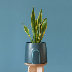 Natede Blue | Plant pots | Vitesy