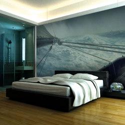 Wall art / Murals | Wall decoration