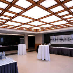 Our solutions for interiors | Barrisol® Tiles | Suspended ceilings | BARRISOL