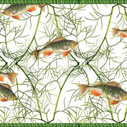 Fish With Dill | Cornici | GMM