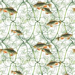 Fish With Dill   Carta parati / tappezzeria   GMM