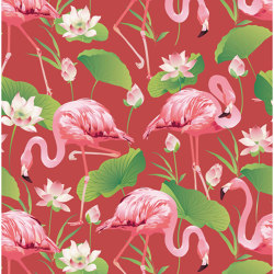 Flamingo Pool   Revestimientos de paredes / papeles pintados   GMM