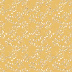 Flower Umbels | Carta parati / tappezzeria | GMM