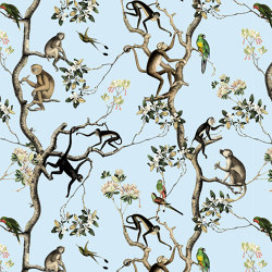 Monkey | Wall coverings / wallpapers | GMM
